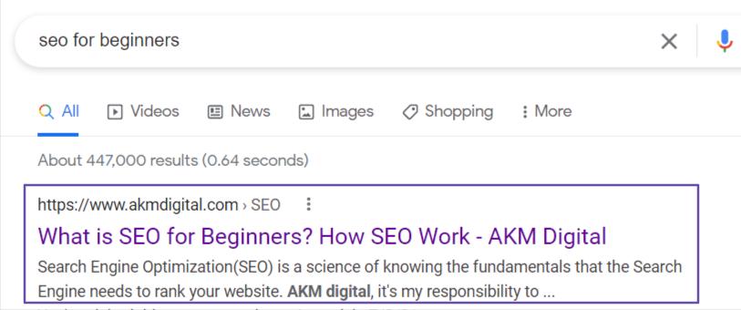 seo-for-beginners-akm-digital-Google-Search